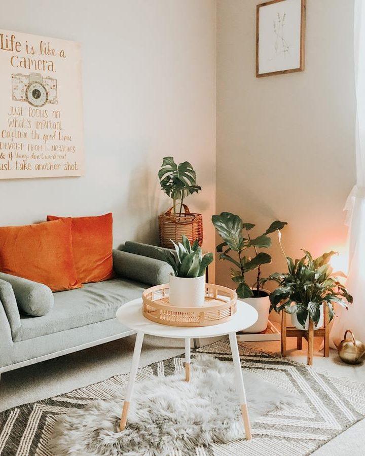 Fotel może stanowić ciekawy akcent kolorystyczny w pokoju