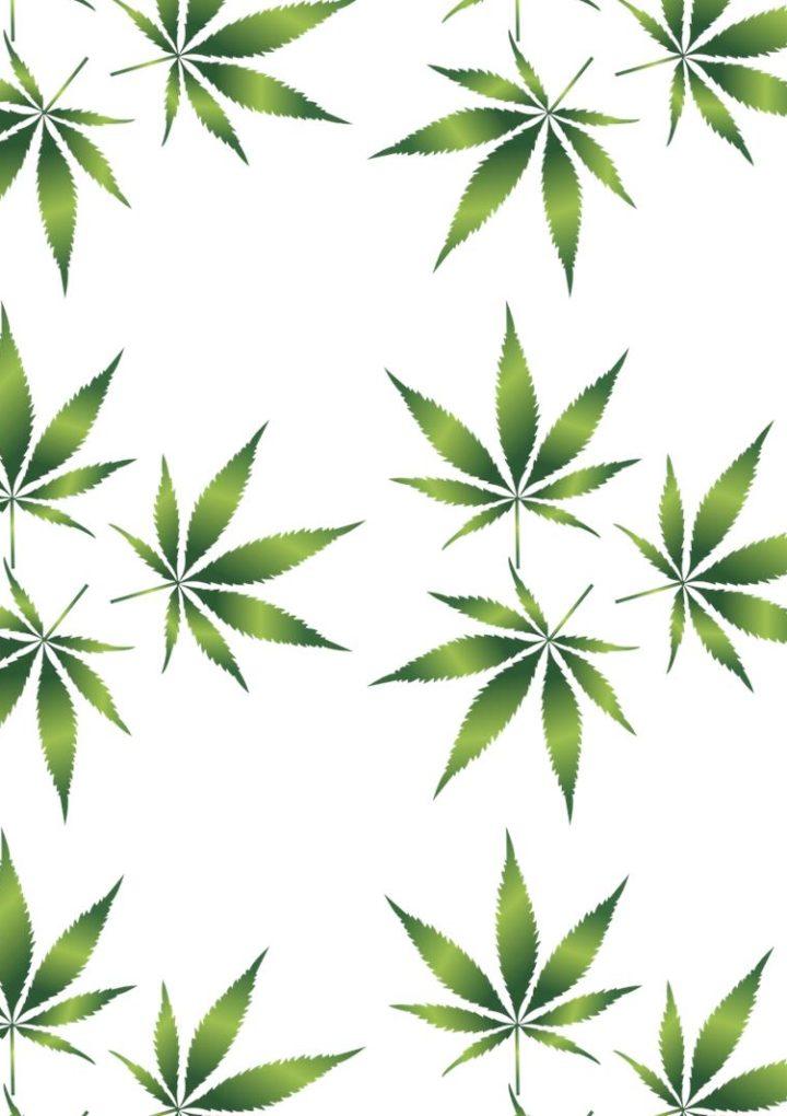 Co nam pomoże wykryć narkotyki i materiały wybuchowe?
